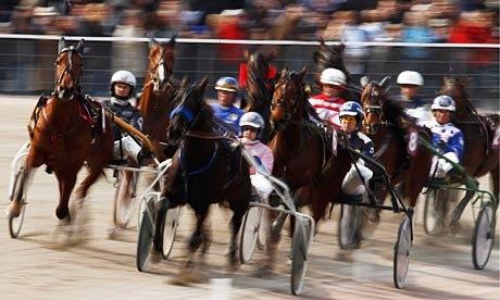 Upcoming Harness Races
