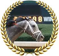 Winning Impression - 2020 Kentucky Derby Contender