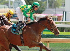 Horse Racing 2015: Kentucky Derby Points Leaders - Top 25 APR 12