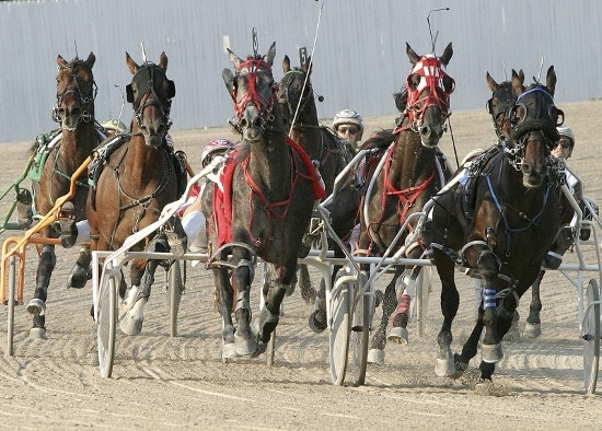 Hoosier Park Harness Racing