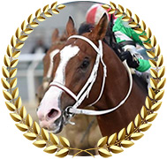 Maximus Mischief - 2019 Kentucky Derby Hopeful
