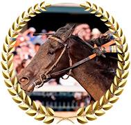 Maxfield - 2020 Kentucky Derby Contender