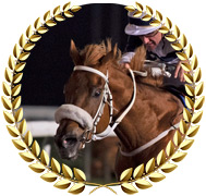 Chares - 2020 Kentucky Derby Contender