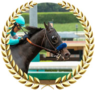 Eight Rings - 2020 Kentucky Derby Contender