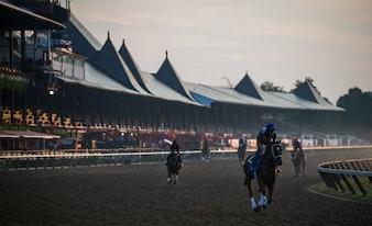 horse racing, travers, travers stakes, saratoga, nyra