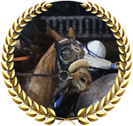 Finnick the Fierce - 2020 Kentucky Derby Contender