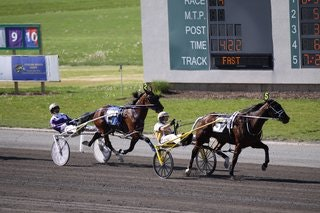 Harness Racing Wagering Handicap
