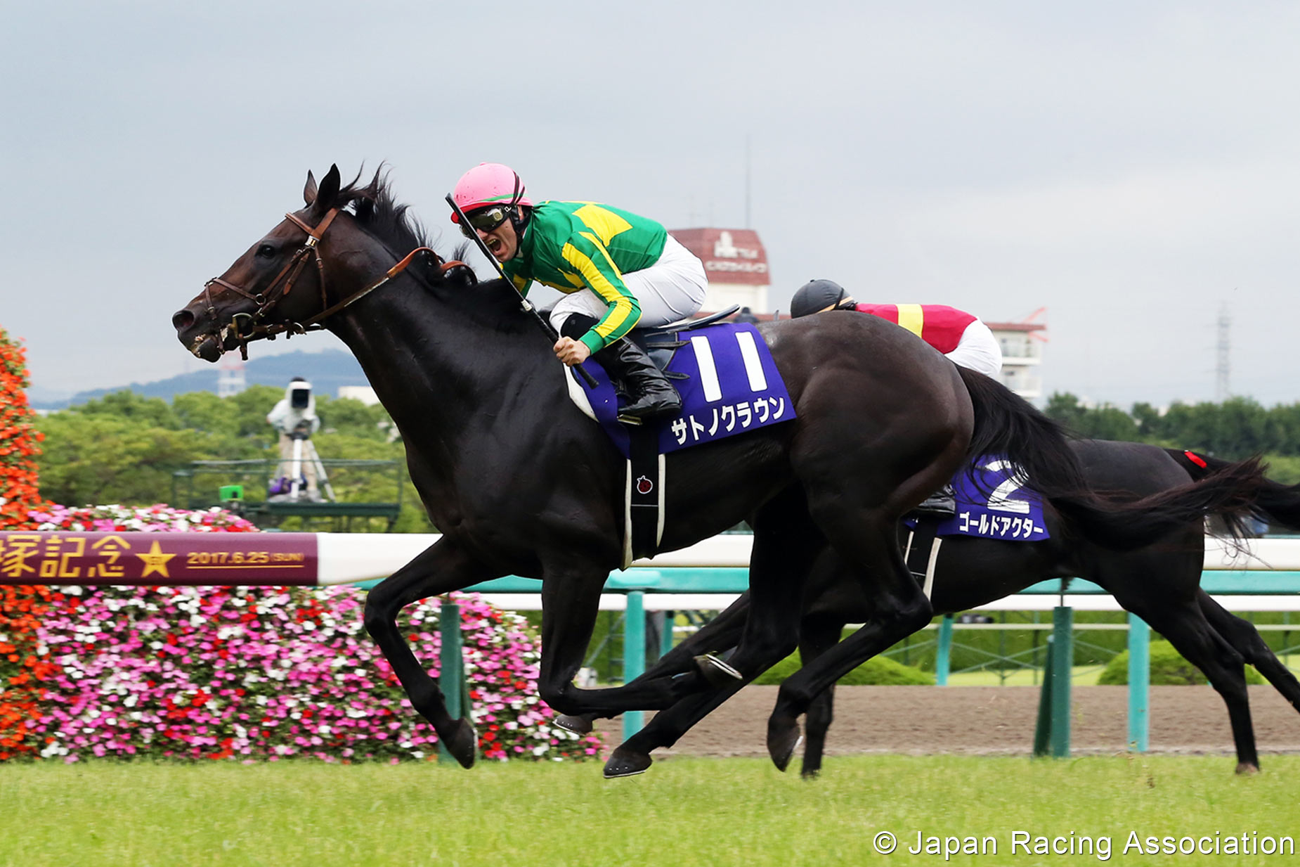 Yasuda kinen betting odds mlb betting lines vegas