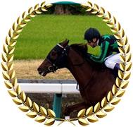 Herrschaft - 2020 Kentucky Derby Contender