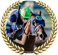 Storm the Court - 2020 Kentucky Derby Contender