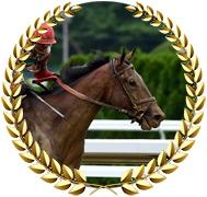 Country Grammer- 2020 Kentucky Derby Contender
