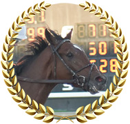Sole Volante - 2020 Kentucky Derby Contender