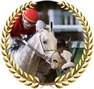 Silver Prospector - 2020 Kentucky Derby Contender