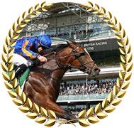 Royal Dornoch - 2020 Kentucky Derby Contender