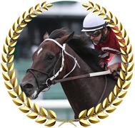Pneumatic - 2020 Kentucky Derby Contender