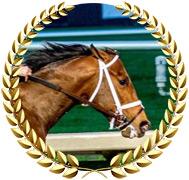 Mr. Monomoy - 2020 Kentucky Derby Contender