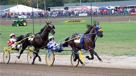 Little Brown Jug Harness racing preview