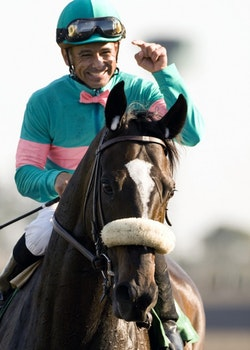 Mike Smith Jockey
