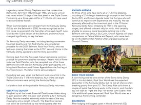 Belmont Stakes analysis page example 2021