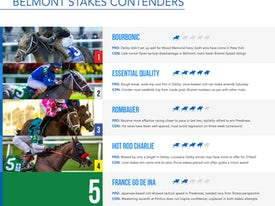 Belmont Stakes contenders page 2021