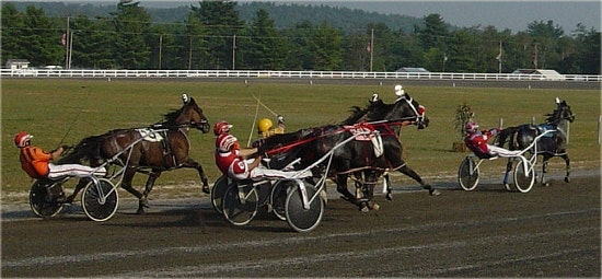 Harness Racing Handicapping Tips Wagering