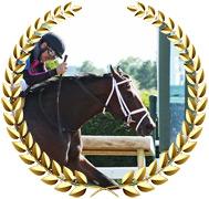 Art Collector - 2020 Kentucky Derby Contender