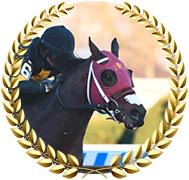 Shotski - 2020 Kentucky Derby Contender