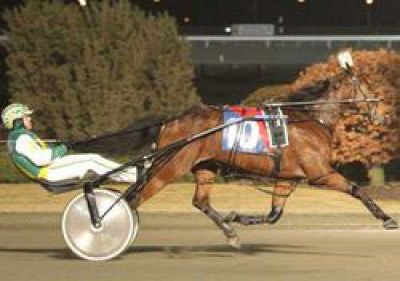 Run and Tell Harness Racing