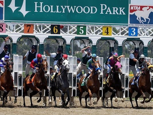 hollywood-park thoroughbred
