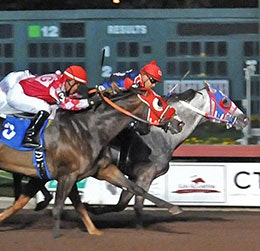 Jake Gold Br will be one of the top contenders in the Bank of America Challenge on Saturday night at Lone Star Park