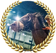 Enforceable - 2020 Kentucky Derby Contender