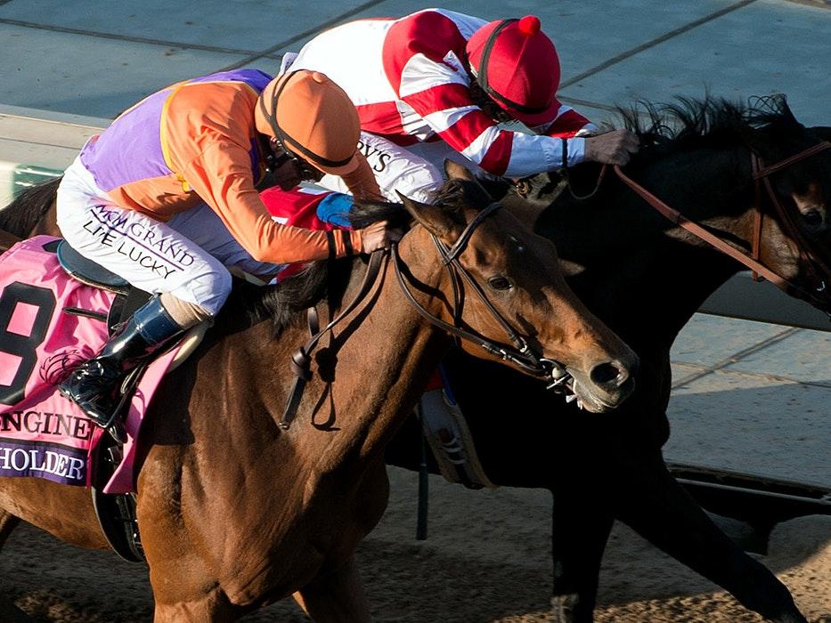 Horse betting strategy exacta inn ferrer isner betting preview goal