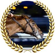 Crossfirehurricane - 2020 Kentucky Derby Contender