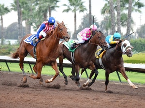 Horse Racing 2014: Los Alamitos Futurity Stakes DEC 20