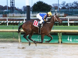 Gold Street (Coady Photo/Churchill Downs)