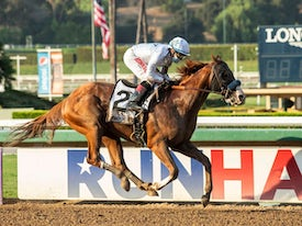 Improbable winning the Awesome Again (G1) - © Benoit Photo