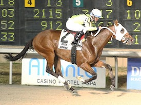 Racing at Delta Downs - Coady Photography/Delta Downs