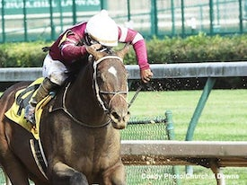 Silver State (Coady Photography/Churchill Downs)